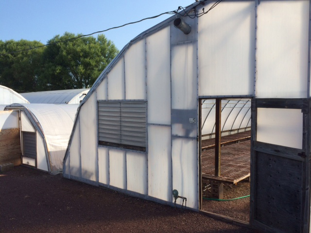 Rice Greenhouse